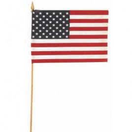 Hand Held USA Flag
