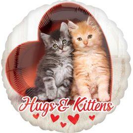 Hugs & Kittens