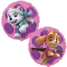Paw Patrol – Skye & Everest