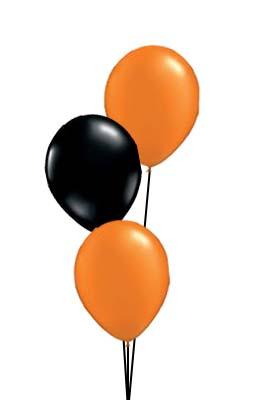 Orange & Black Prices start from