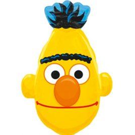Bert Shape