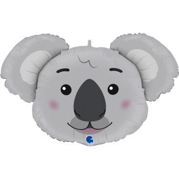 Koala 37″