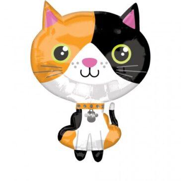 Cat 21″